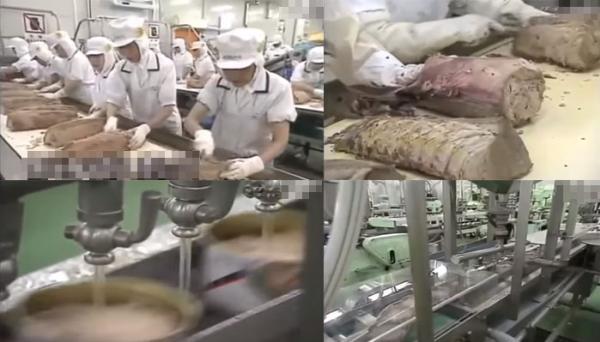 คลิปขั้นตอนการผลิต ทูน่ากระป๋อง อาหารโปรดของใครหลายคน