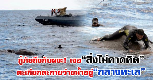 กู้ภัยเจอ 'สิ่งไม่คาดคิด' ตะเกียกตะกายอยู่กลางทะเล 'พอเข้าไปดูใกล้ๆ' ถึงกับผงะ!! (ชมคลิป)
